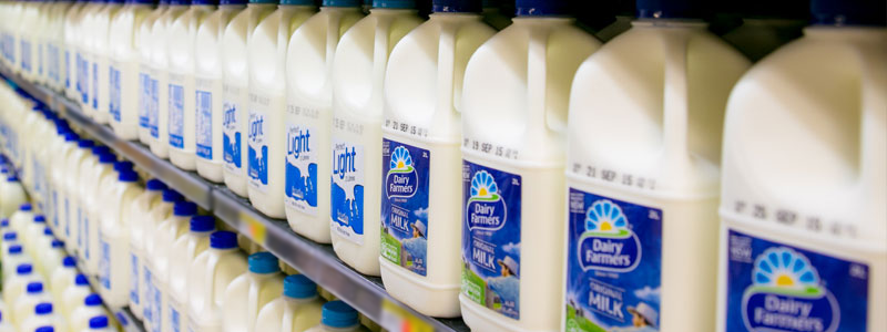 Milk in the dairy section of Waikiki IGA